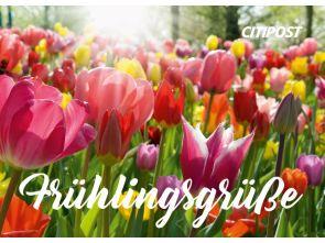 "Ganzsachenkarte ""Frühlingsgrüße"""