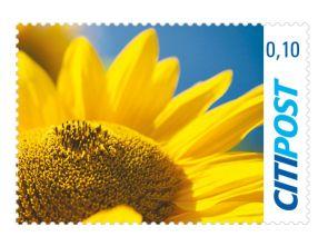 """Markenheft Ergänzungswert """"Sonnenblume"""" 0,10 €"""